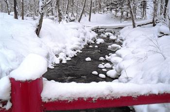 雪が積もった赤い橋の欄干