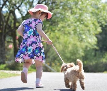 子犬を引いて歩く小さな女の子