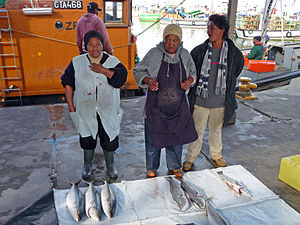 English: Fish seller in Kalk Bay, Cape Peninsu...