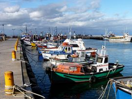 Few boats go out from Kalk  Bay harbour these days because False Bay has been overfished.