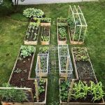 40 Stunning Vegetable Garden Design Ideas Perfect For Beginners (14)