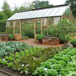 40 Stunning Vegetable Garden Design Ideas Perfect For Beginners (17)