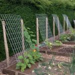 40 Stunning Vegetable Garden Design Ideas Perfect For Beginners (39)
