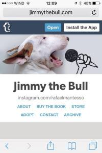 I must confess that i didnt think jimmy's playing cards would sold out so fast.... but, as a lot of people said it cards were too small and wanted bigger photos, we then thought and did a jimmy calendar.... and its a 13 month calendar, so we can start using this year already. www. jimmythebull.com