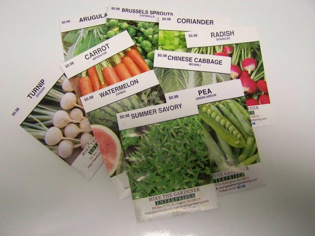 Hunger Awareness Week Community Seeds At Local Garden