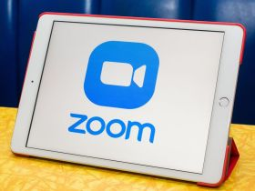 zoom business plan