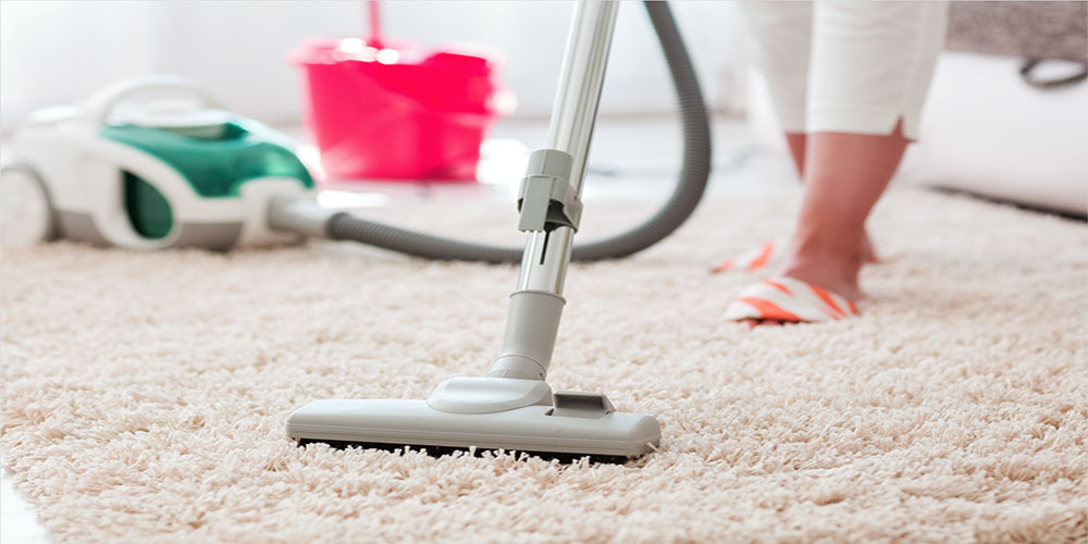 Top 7 Best Pet Stain Remover Machine for Carpets –  Buyer's Guide