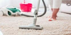 best pet stain remover machine