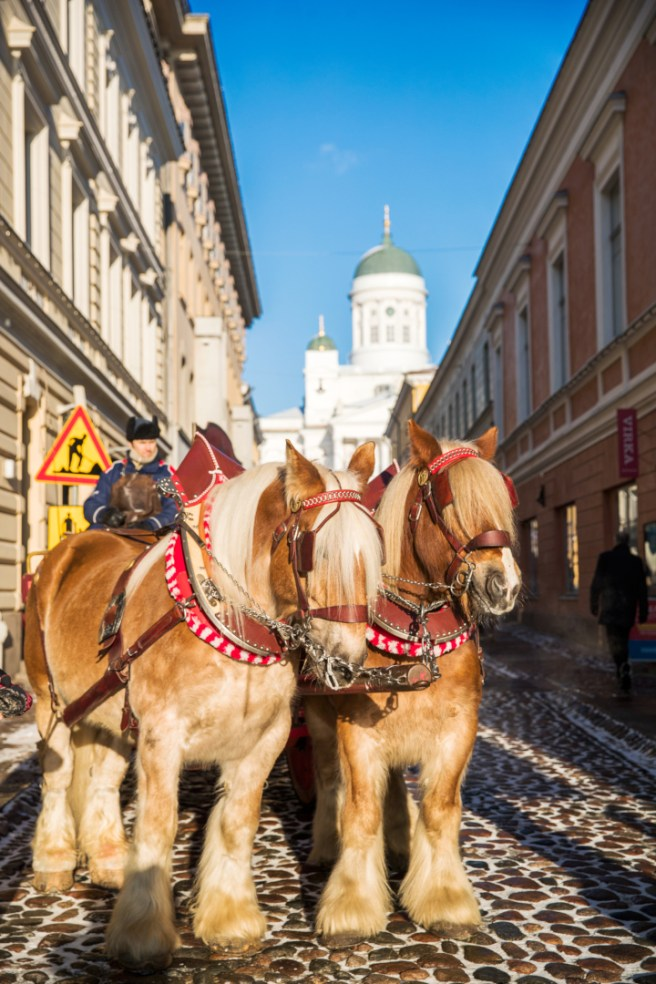 Horse carriage Kuva: Yiping Feng and Ling Ouyang / Helsinki Marketing