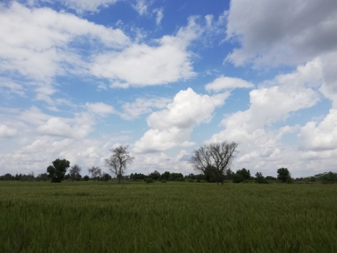 green land images
