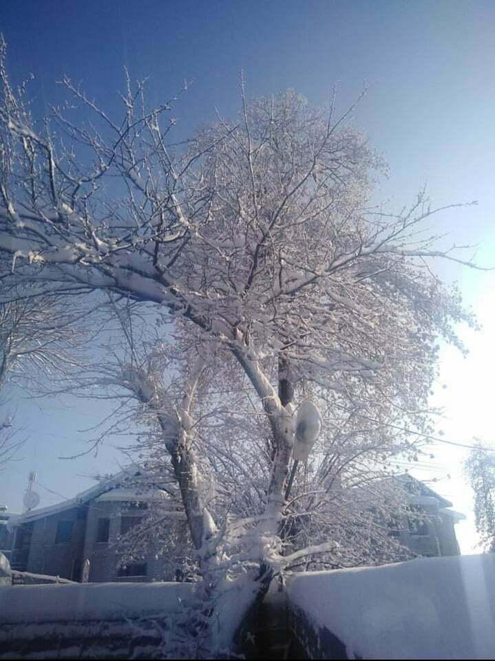Best Winter Snowfall