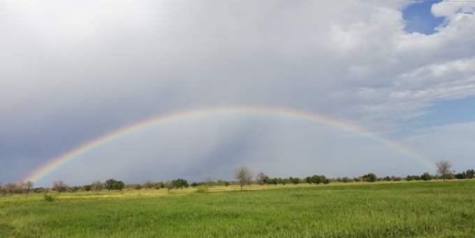 Pics of Rainbow