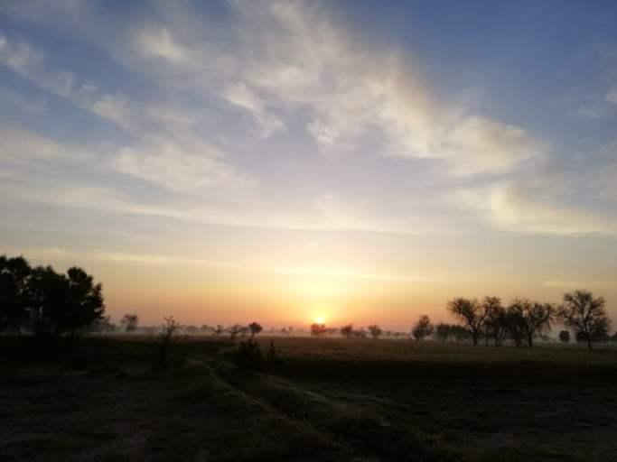 Beautiful Sunrise picture