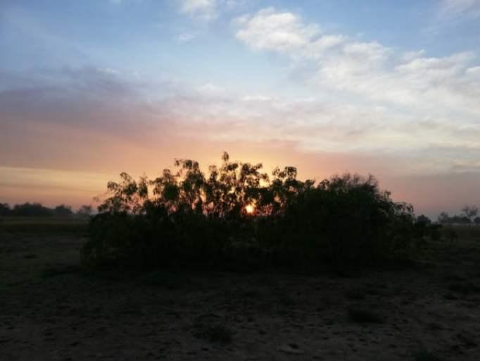 Background images of sunrise