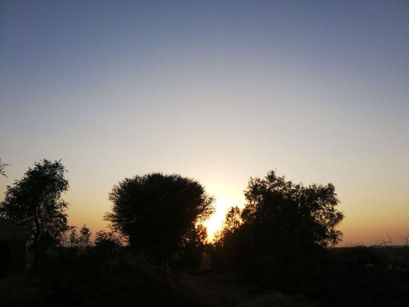 sunset on venice beach