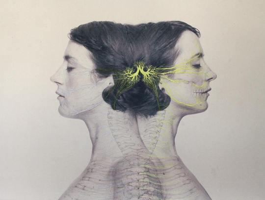 Juana Gomez - Embroidered Illustration