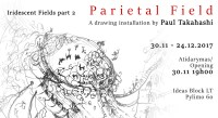 Parietal Field Exhibition opening by Paul Takahashi, 30th of November, 19.00