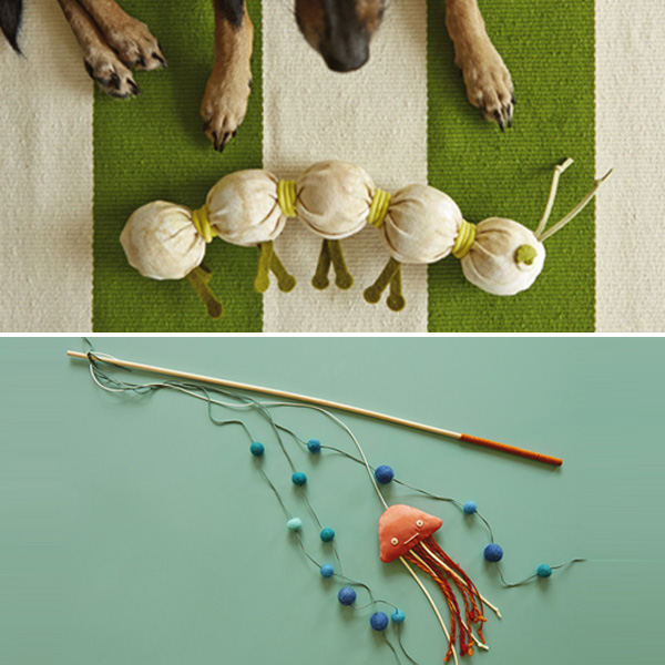 DIY Dog Toys And Cat Toys Hallmark Ideas Amp Inspiration