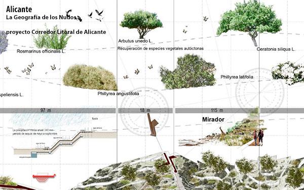 Corredor litoral Alicante