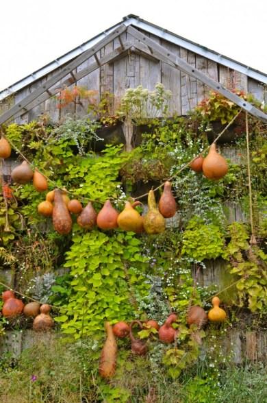 terrain+autumn+pumpkins+fall+pennsylvania+gourds+anthropologie+garden+inspiration+design+inspiration+thanksgiving+halloween1-634x957