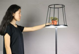 Silhouette Floor Lamp