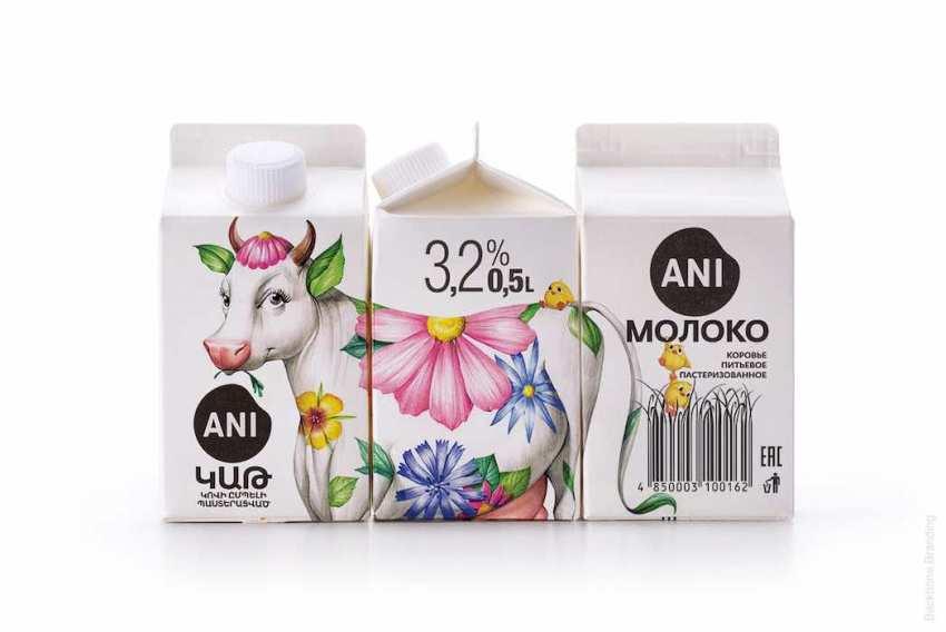 Backbone Branding Empaque lácteos Ani