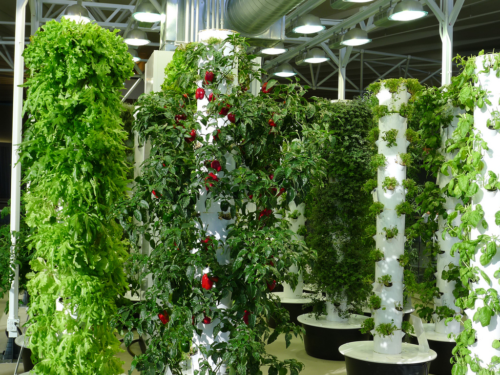how to start your organic vertical farming
