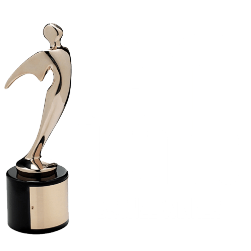 2014 Telly Award Winner