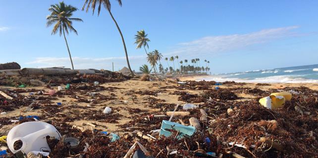 plasticos-oceanos-sostenibilidad