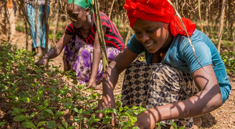fairtrade-empoderamiento-mujeres