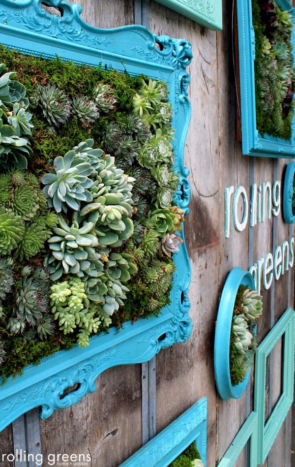 Creative Indoor And Outdoor Succulent Garden Ideas 2017 on Garden Patio Wall Ideas id=11442