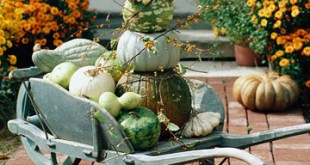 51 Cheap And Easy DIY Outdoor Fall Decorations