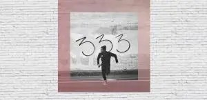Recommendation: FEVER 333