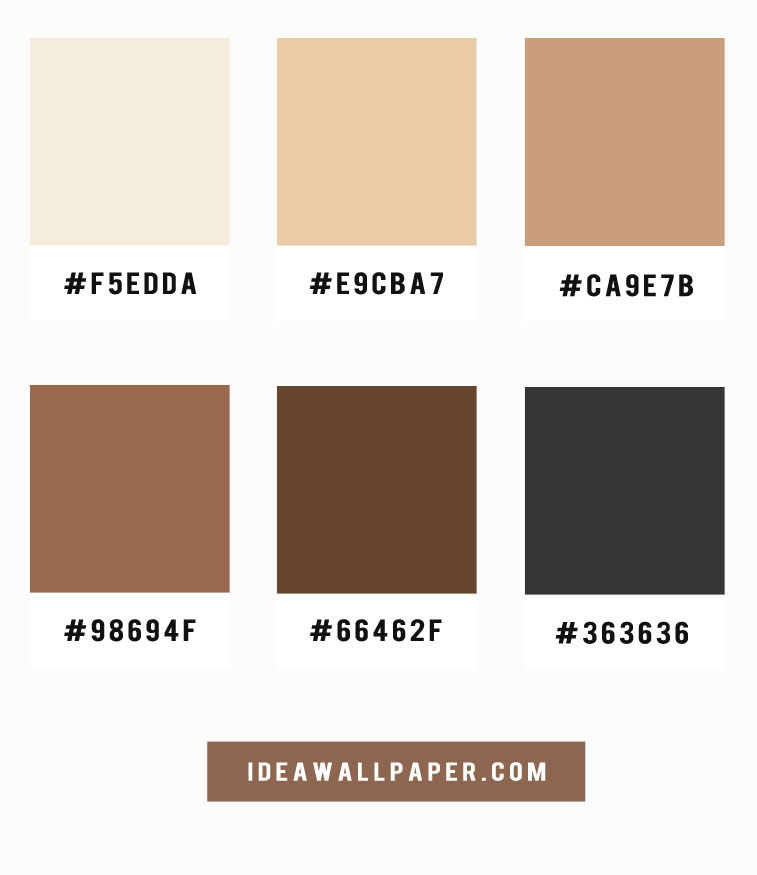 Shades Of Latte And Coffee Color Scheme A Pretty Color
