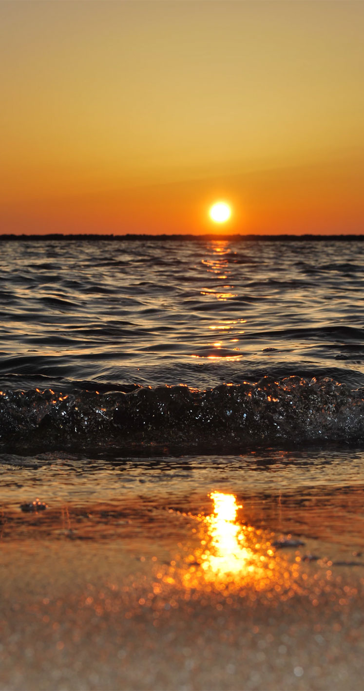 Beach Sunset iPhone wallpaper,beach iphone wallpaper for ocean lover ,beach iphone wallpaper,beach sunset background
