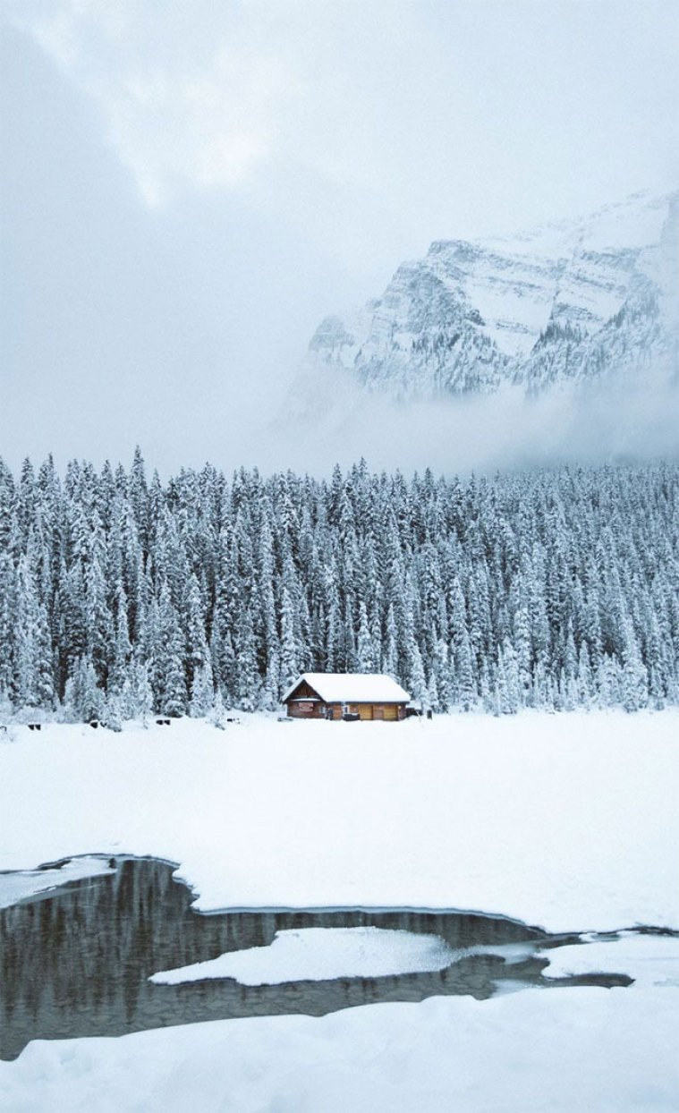 Log Cabin Covers in snow iPhone wallpaper