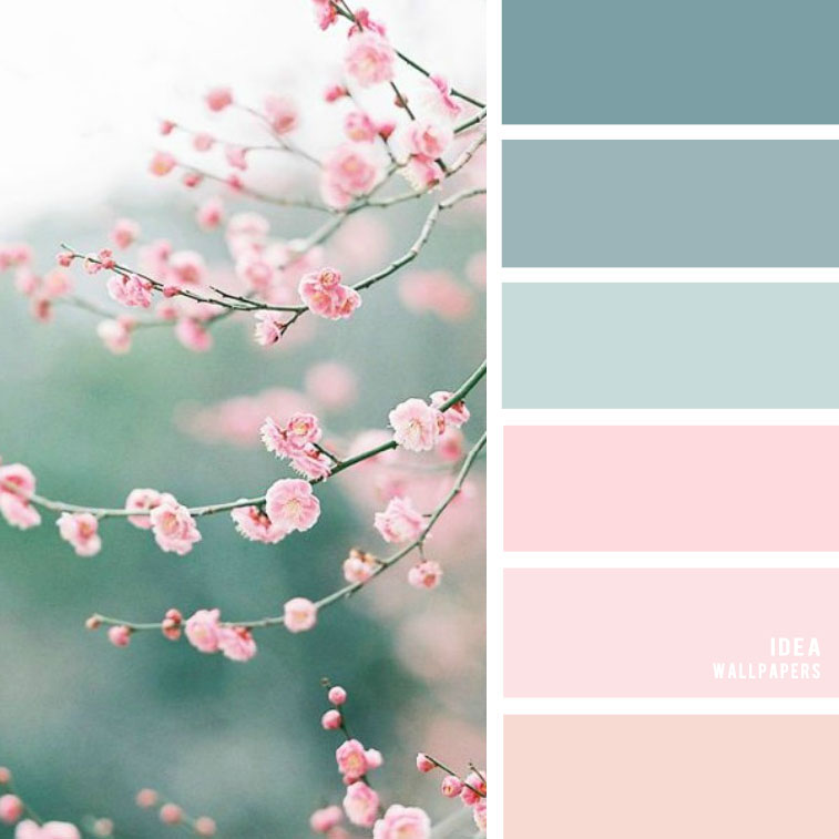 19 The Perfect Pink Color Combinations { Blush + Light blue + Blue Green }, blush color palette, black and blush colour palette #color #colorpalette
