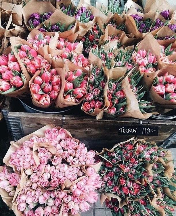 Pretty flowers in market