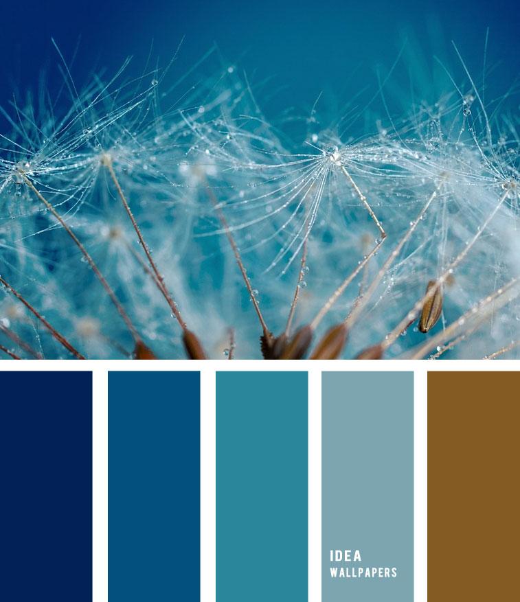 Dandelion Seeds Inspired Color Palette 1905213 , color palette , blue teal and brown color palette, teal and brown , teal color palette #pantone #color