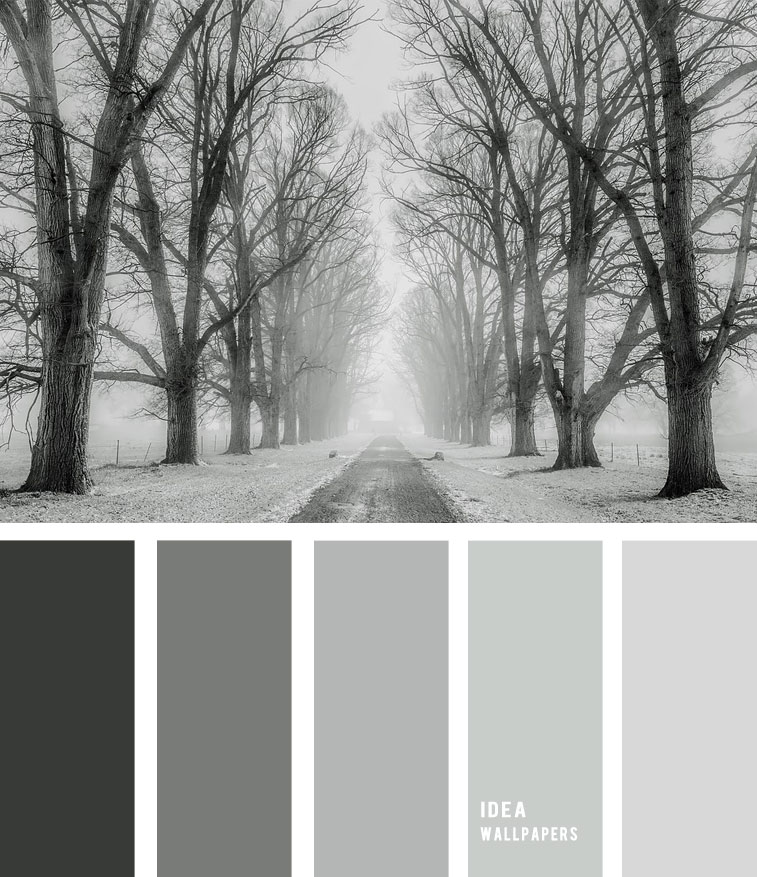 Winter color palette - grey Color Palette, color palette , winter color palette, blue and grey , grey color palette #pantone #color