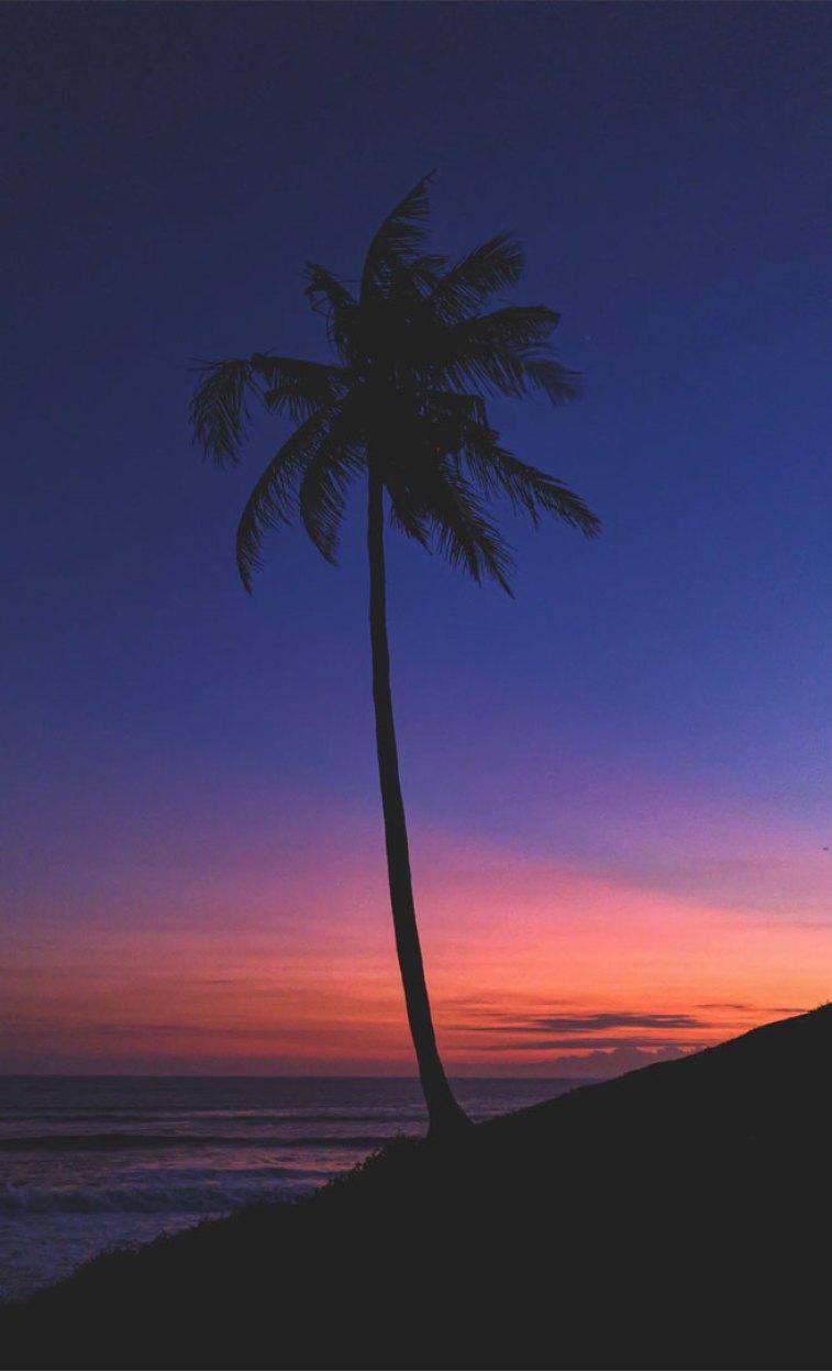 indigo and peach sky iPhone wallpaper , Evening sky iphone background,Sunset beach iPhone wallpaper, iphone background, summer