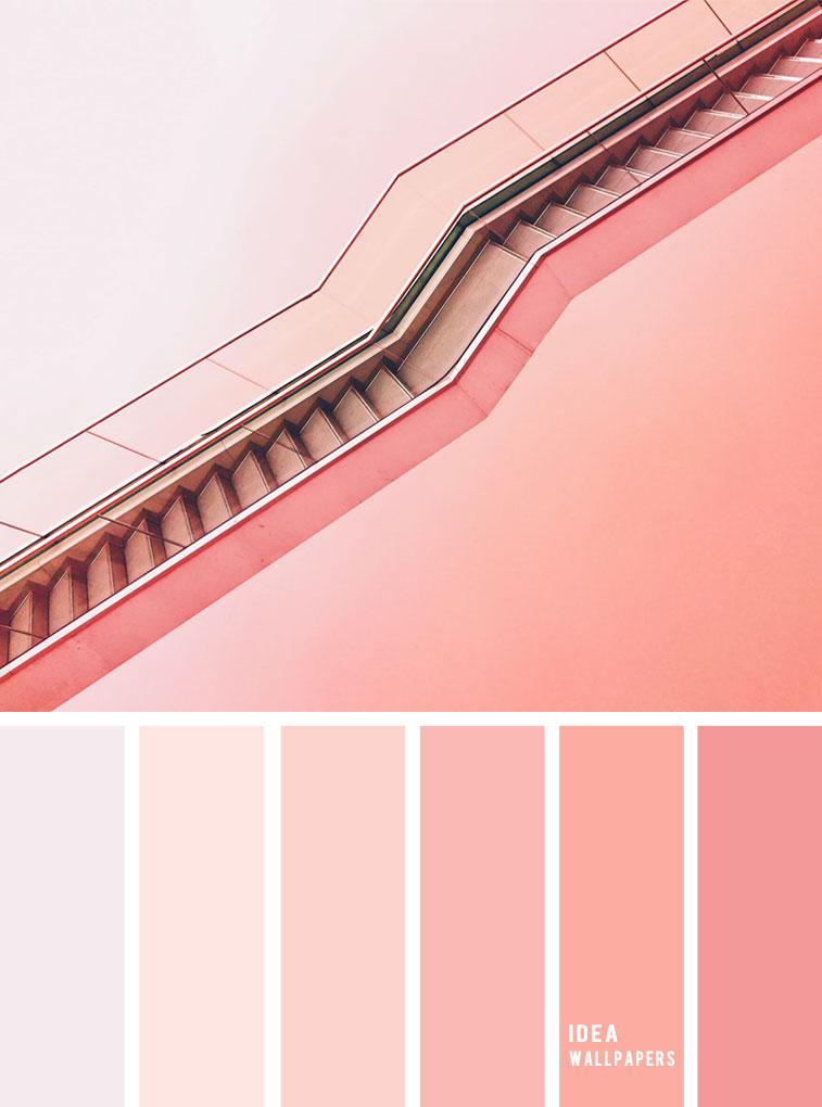Pink Coral Color Palette #color #coral #pink #colorpalette color inspiration