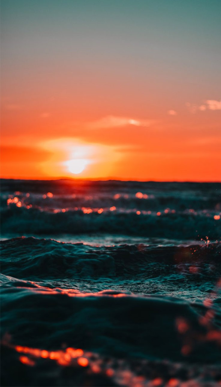 100 Beautiful iPhone wallpaper ,Beautiful sea iPhone wallpaper,head to the beach iPhone wallpapers, Evening sky iphone background,Sunset beach iPhone wallpaper, iphone background, summer ,flower #beachsunset