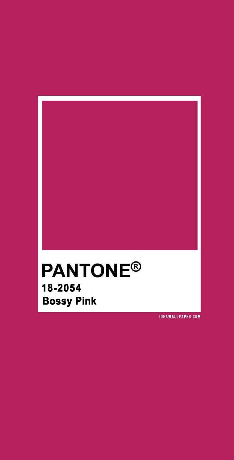 100 Pantone Color Palettes : Pantone Bossy Pink 18-2054 #pantone #color #darkpink #bossypink