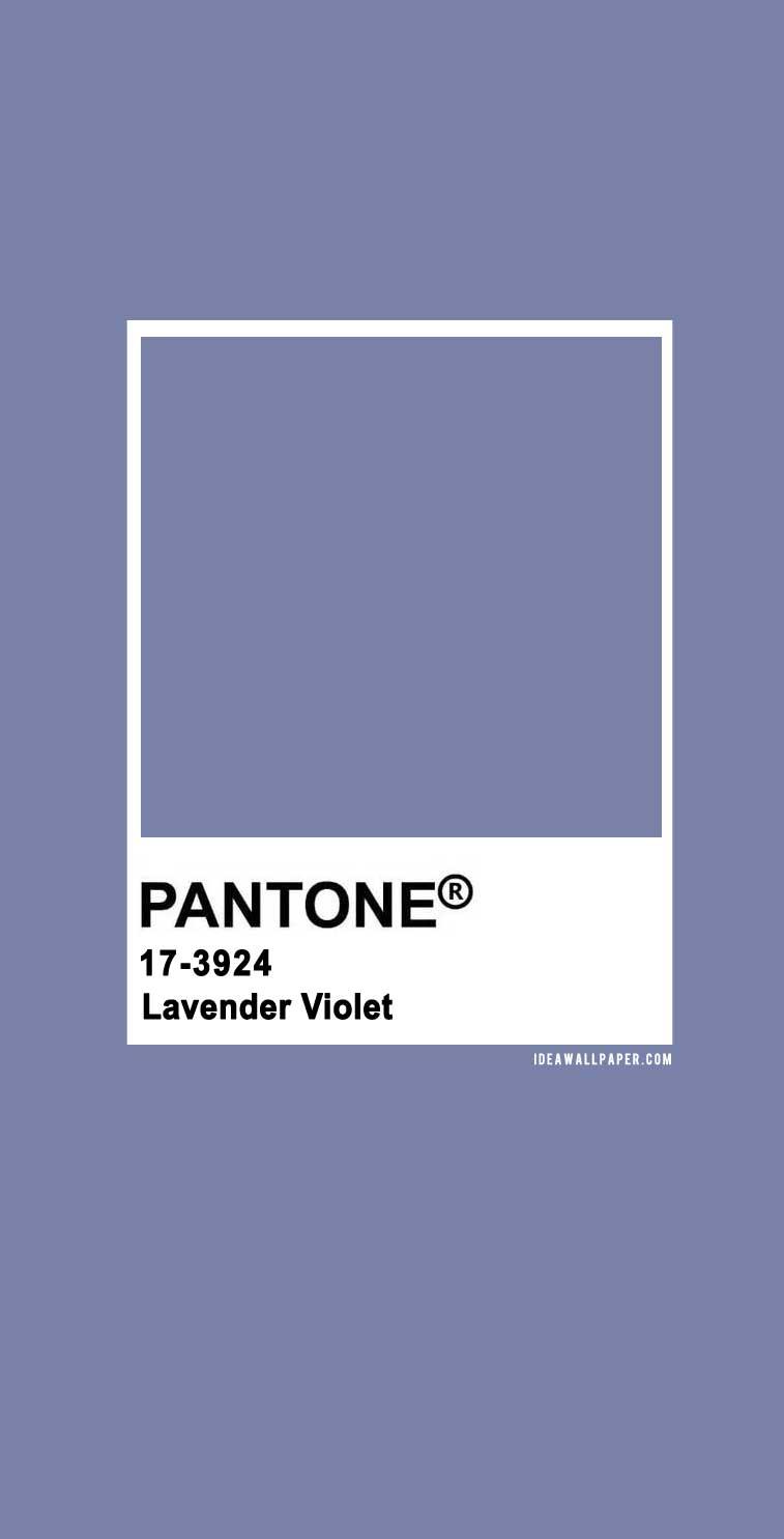 60 Pantone Color Palettes : Pantone Lavender Violet 17-3924 #pantone #color #lavender #purple