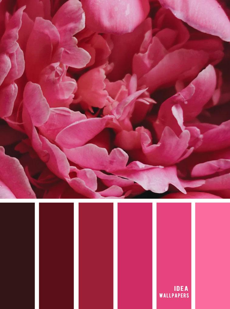 Color Inspiration : Pink hue #color #pantone #pink
