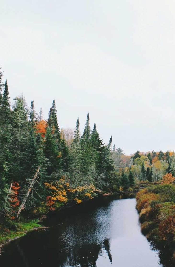 beautiful landscape, autumn aesthetic, autumn landscape, autumn images, iphone wallpapers, autumn iphone wallpaper, autumn iphone wallpapers, iphone background , fall landscape