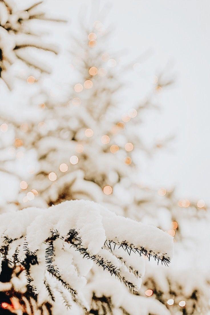 snow ,fairy light on christmas tree, winter wallpaper, christmas wallpaper, festive iphone wallpaper, winter aesthetic , winter iphone wallpapers