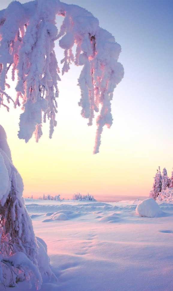winter iphone wallpaper 23, iphone wallpaper, snow wallpaper, iphone wallpaper winter, winter background, winter iphone background, winter morning, winter aesthetic #winter