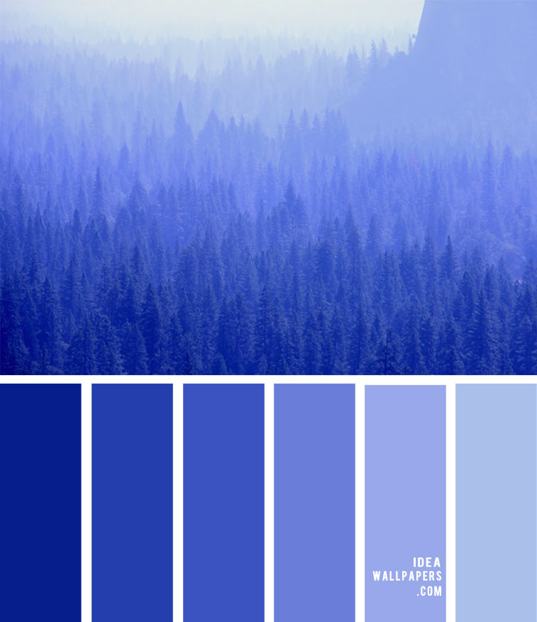 cobalt blue, royal blue, color palette, royal blue color palette, cobalt blue color palette #colors #cobaltblue